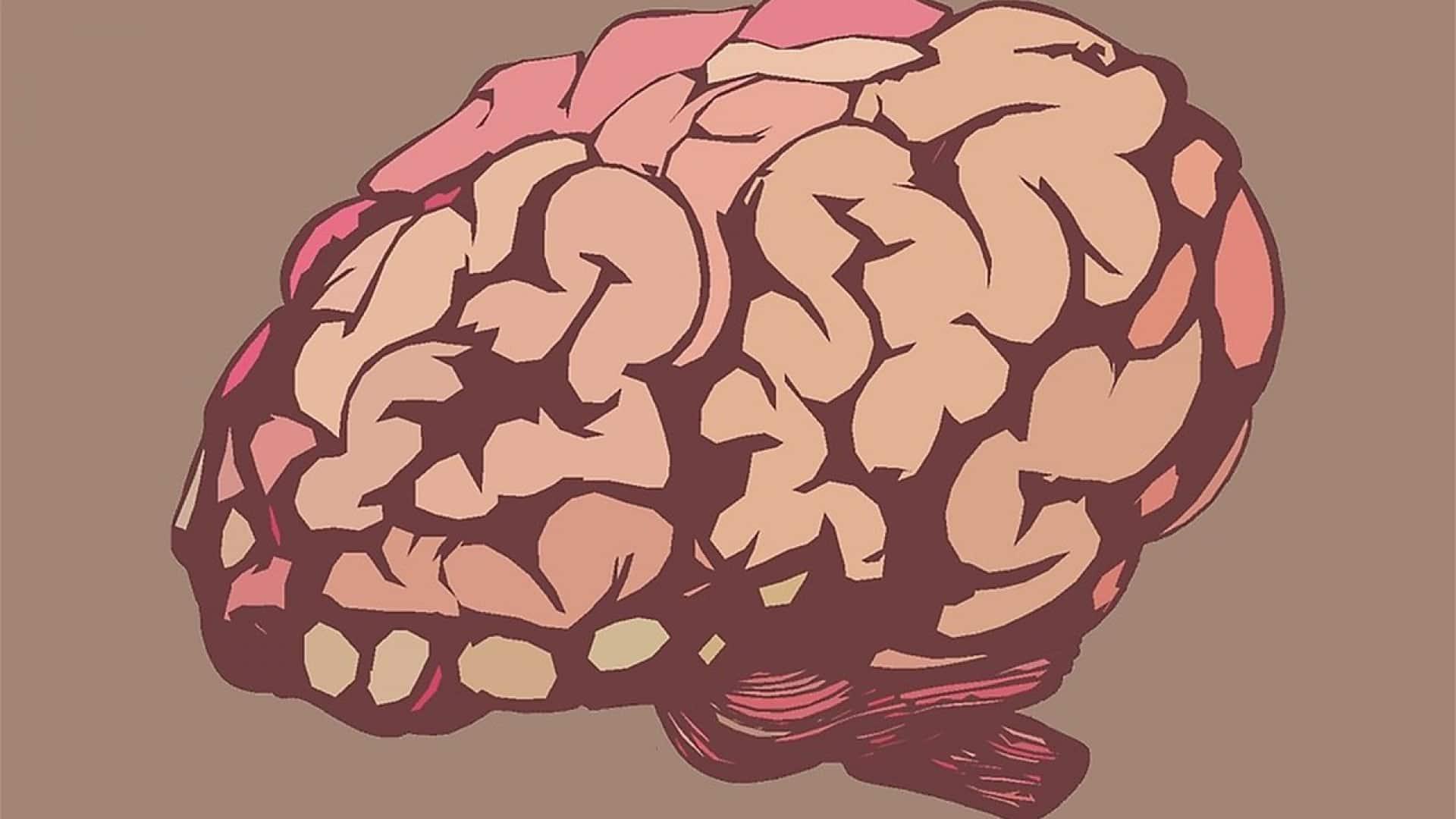Deux solutions pour booster le fonctionnement de votre cerveau